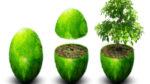 environmental research.jpg