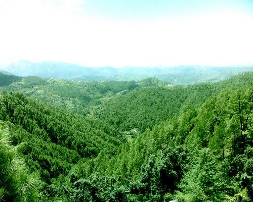 Green himachal