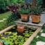 Home garden tips