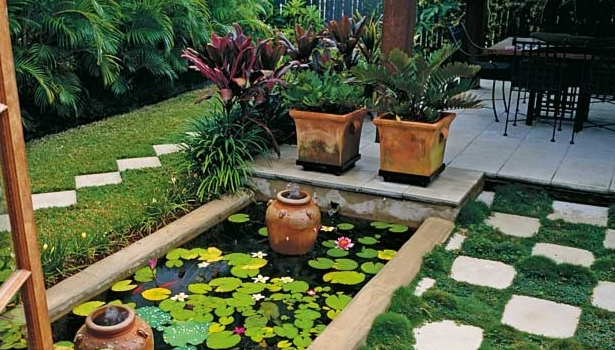 Gardening tips for beginners 9 tips to develop a home for House garden design india